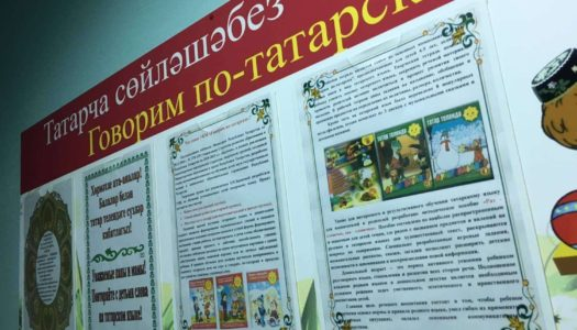 Кремль не пошел на уступки РТ по вопросу изучения языка в школах